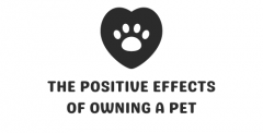 The Positive Effects Of Owning A Pet