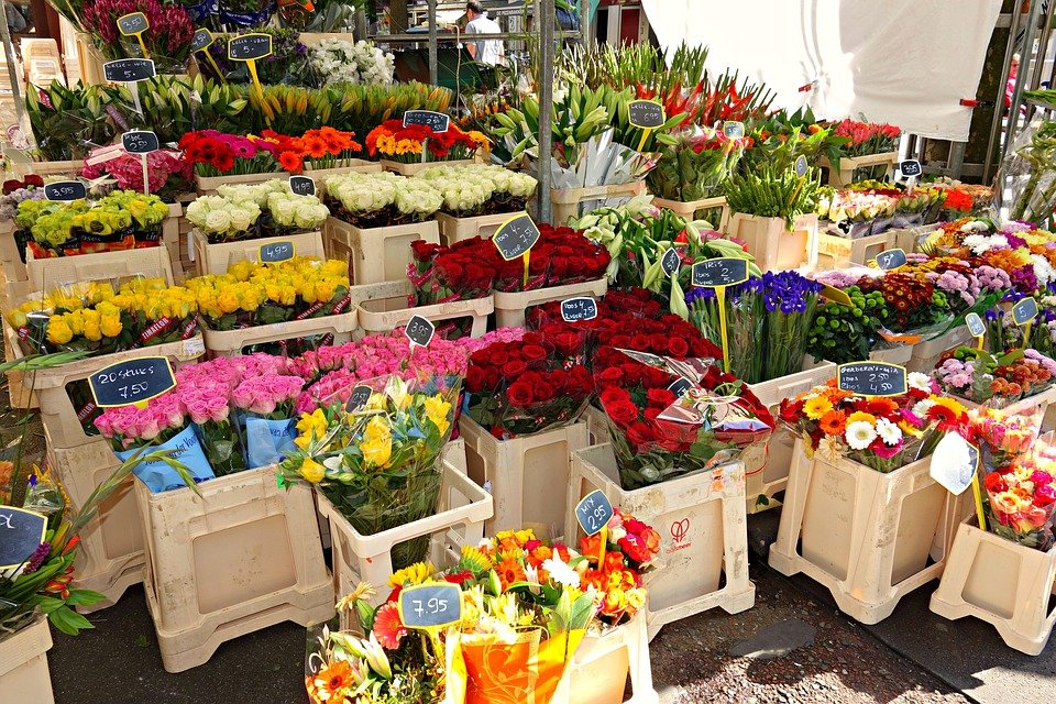 ร้านดอกไม้
